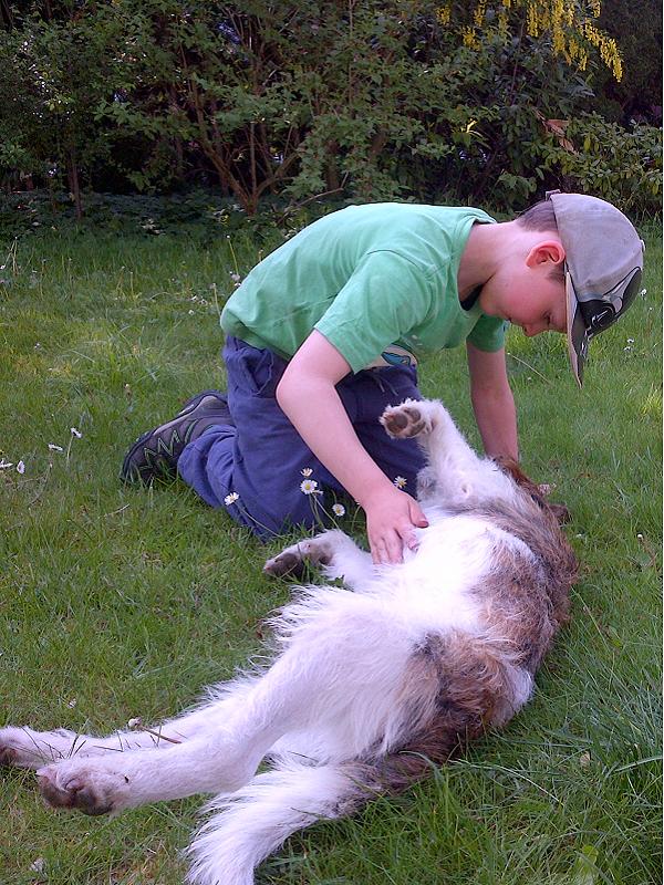 Besuchshund Luca mit Kind