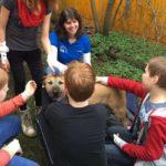 Schulbesuch bei der ASB-Rettungshundestaffel