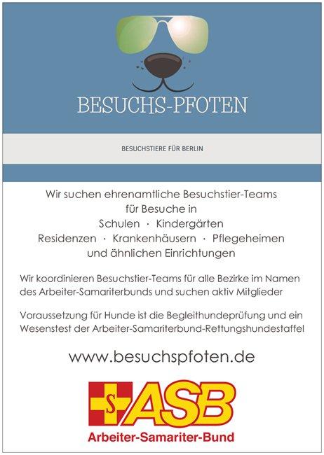 Besuchspfoten Flyer zum Thema Team Werden