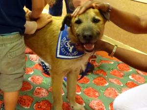Beuschshund Diggles mit Kita-Kindern